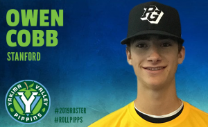 526eb5188bed63 Press Releases - Pippinsbaseball